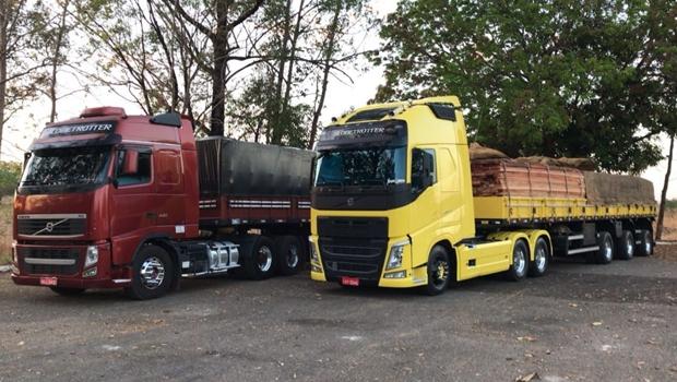 PRF apreende cerca de 200 m³ de madeira ilegal na BR-153 e prende sete por crime ambiental
