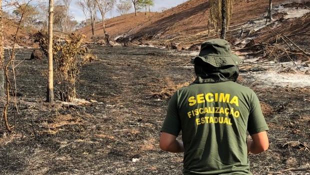 Operação detecta mais de 300 hectares de áreas desmatadas sem autorização em Goiás