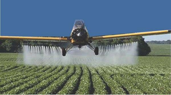 Agrotóxicos precisam ser regulamentados