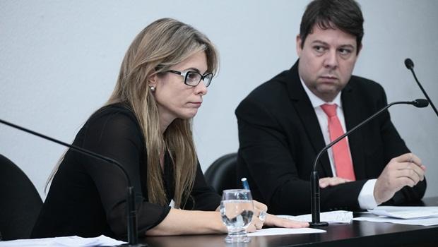 Secretária da Economia estará na Comissão de Finanças da Assembleia no dia 28 de agosto