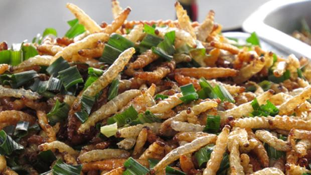 Conheça a dieta à base de insetos que a ONU defende ser a solução alimentar do futuro