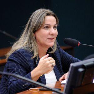 Deputada Dulce Miranda