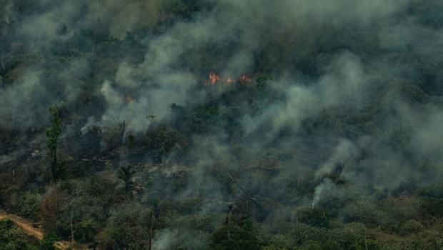 Governo deve rejeitar oferta do G7 para combater incêndios na Amazônia