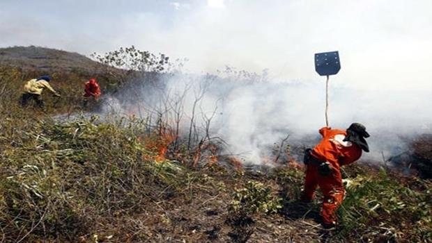 Chapada da Diamantina, na Bahia, sofre com incêndio de grandes proporções