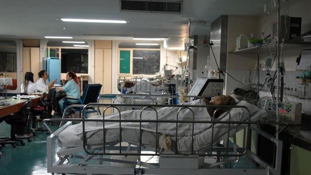 Projeto garante informações clínicas online para familiares de internados com Covid-19