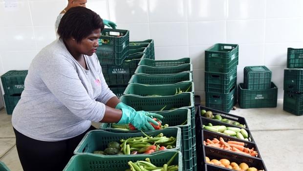 700 toneladas de alimentos foram distribuídas pela OVG nos últimos 8 meses