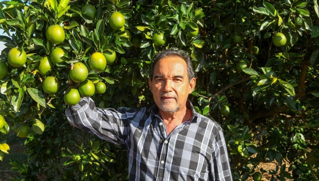 Atividades que garantem abastecimento em Goiás continuam funcionamento