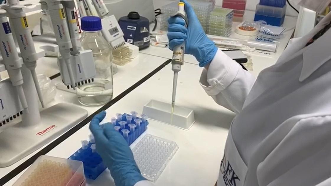 Teste laboratorial inédito identifica grau de imunidade à Covid-19