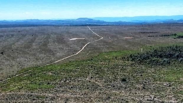 Área da Chapada dos Veadeiros teve mil hectares desmatados ilegalmente