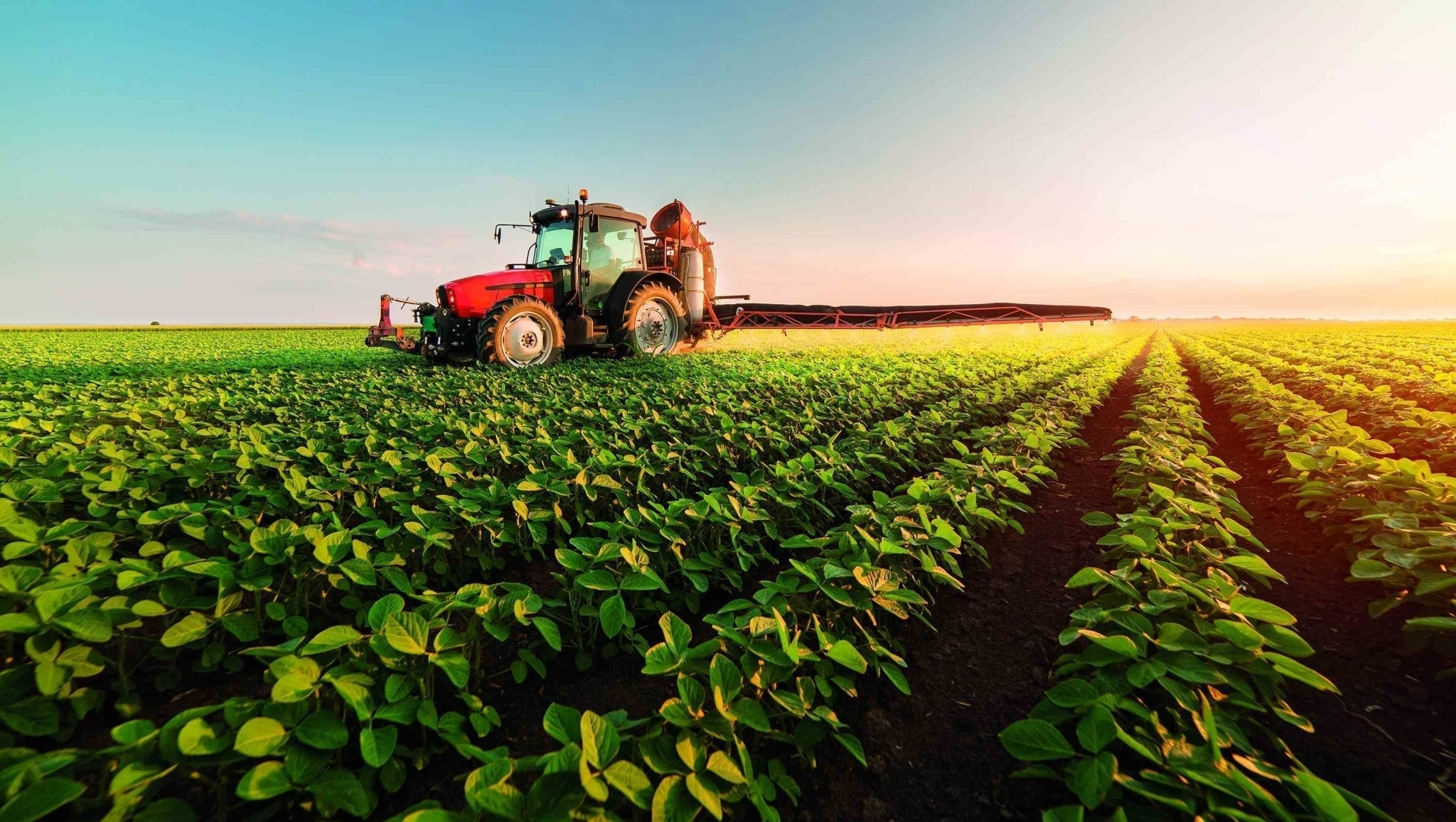 Plano Safra destina a Goiás R$ 18 bi, mas menos de R$ 700 milhões à agricultura familiar e zero centavo para a urbana
