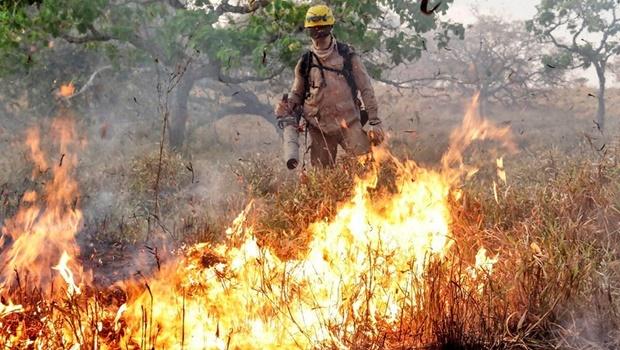 Casal é flagrado provocando incêndio em vegetação em Aparecida de Goiânia