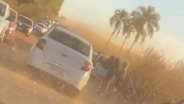 Plantação de girassol em Goiás vira caso de polícia após queixa de proprietário por aglomeração para fotos