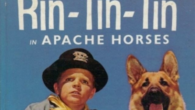 Três cães famosos: Nipper, Rin Tin Tin e Lassie