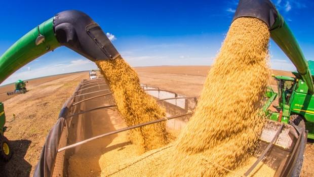 Imposto para importação do milho e soja ficará suspenso até fim do ano