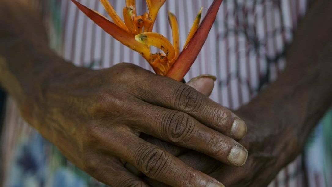 Imprensa omite nome da professora da UFRJ que escravizou mulher negra por 41 anos