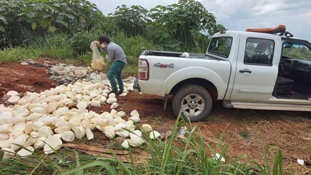 PRF e Agrodefesa apreendem mais de meia tonelada de queijo estragado, em Abadia de Goiás