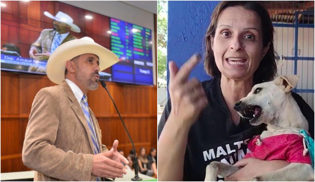 Câmara espera manifestação de desagravo da Alego no episódio das agressões verbais de Amauri Ribeiro a Lucíula do Recanto