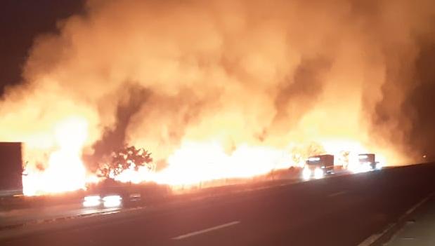 Produtor rural é preso por incendiar mata às margens  da BR-153, em Goiás
