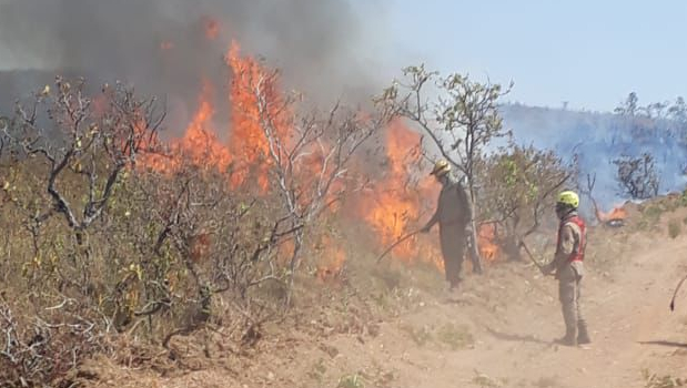 Dois bombeiros que atuam no combate ao incêndio na Chapada dos Veadeiros testam positivo para Covid