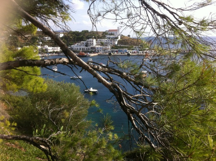 Bay with pine tree in Skyros