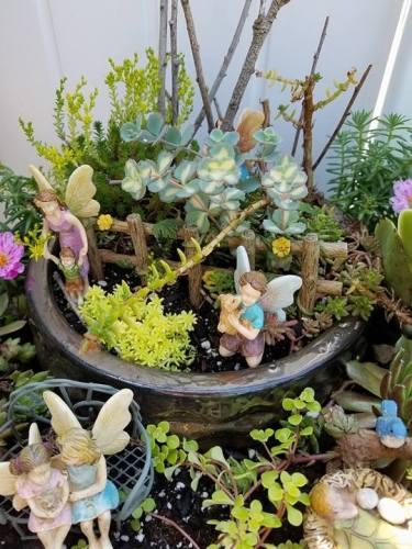 Fairy-Garden-11