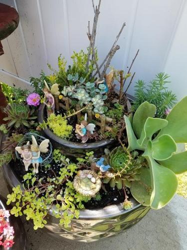 Fairy-Garden-7