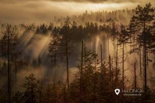 Přechod nízké inverzní oblačnosti v mlhy