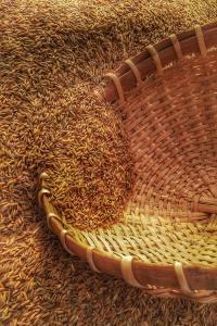 Grain in a Basket