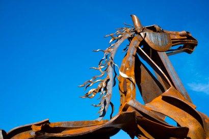 Closeup-Horse-1182