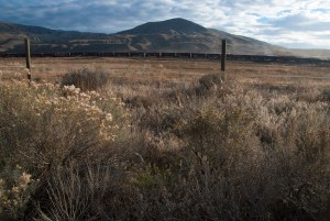 Train and sagebrush