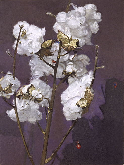 Cotton, oil on canvas, 16 x 12 inches, 1998. Private collection.