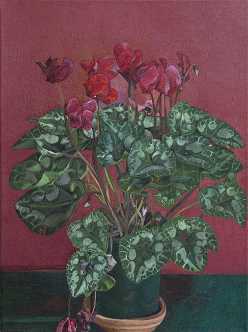 Cyclamen, oil on linen, 16 x 12 inches, 2006.