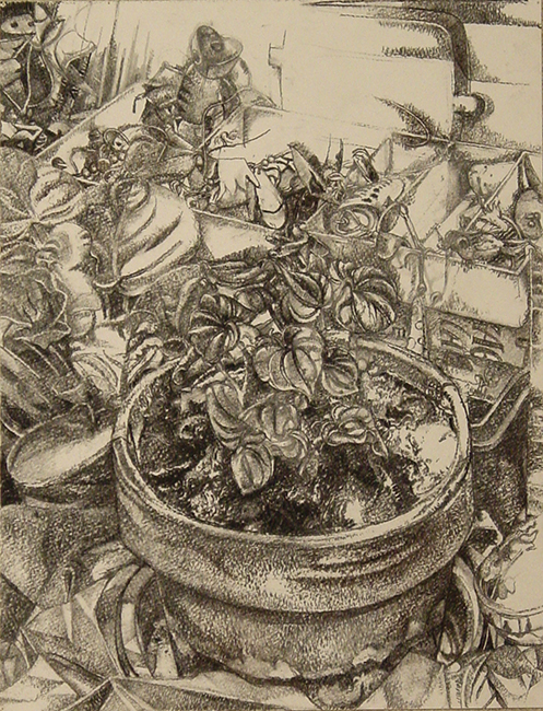 Plant with Tackle Box, charcoal on paper, 14 x 12 inches, 2006. Private Collection.