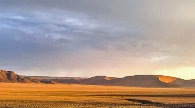 Namib-Kulala light.