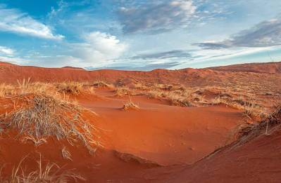 Morning on Elim Dune.