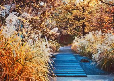 The lush wilderness of the Quai Branly turns to gold in the fall.