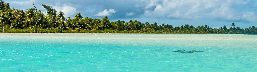 Gauguin-Fakarava lagoon 2.