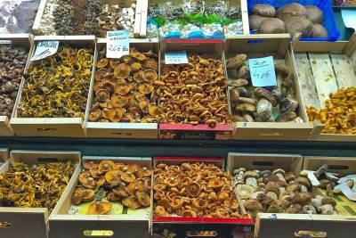 A mushroom stall at La Boqueria.