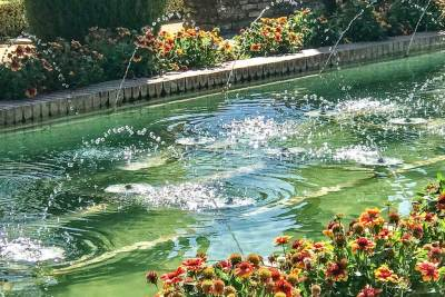 The gardens of the Alcázar (2)