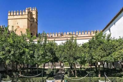 The gardens of the Alcázar citrus grove.