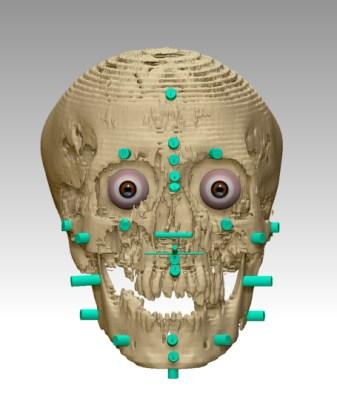Nesmin skull-markers