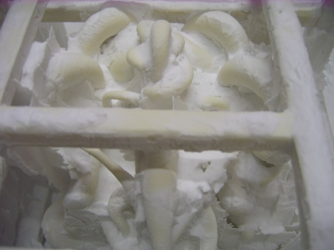 """3d printed """"Permutation Prime"""" pattern for bronze casting ready for removal from printer"""