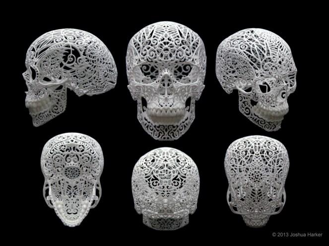Crania Revolutis
