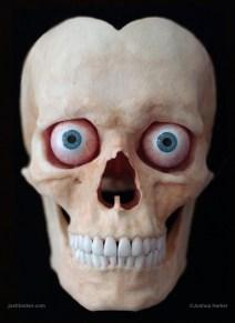 skull-front