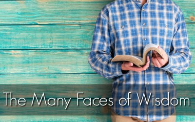 The Many Faces of Wisdom