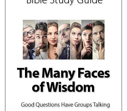 Wisdom is not shy