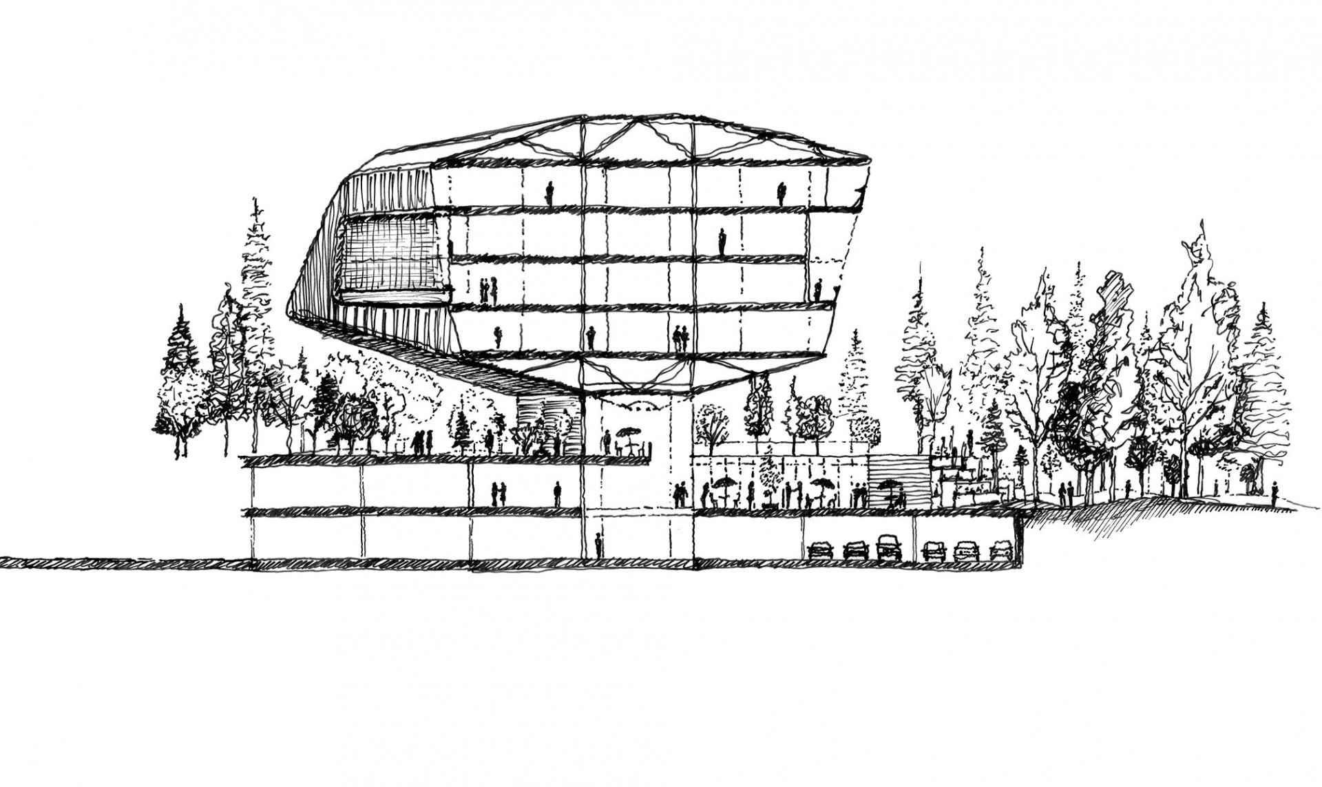 Illustrated Architectural Section