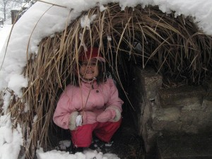 The massive snow pushed our ornamental grass over the retaining wall, forming a natural igloo. Josie went inside, but decided it was too dark.