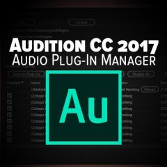 Adobe Audition Tutorial: Third Party VST Management