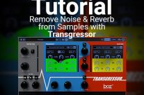 Tutorial: Remove Noise & Reverb from Samples with Transgressor